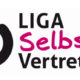 Logo Liga SV Bundesebene